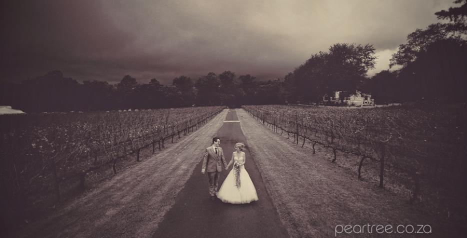 Molenvliet, W.Collaboration, Winelands Weddings, Venue, Stellenbosch, Peartree, Annalize Buchanan, SMD, ASAP Staffing